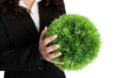 Green business concept Stock Images
