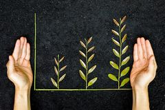 Green business graph Stock Image
