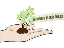 Green business offer stock illustration