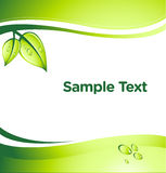 Green Business Vector Background Stock Photography