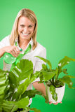 Green business woman water houseplant smiling Royalty Free Stock Photography