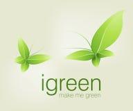 Green butterflies stock images