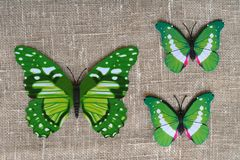 Green butterflies decorative. On a natural background Stock Image