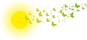 Green butterflies in front of the sun for greeting cards. And other kind of cards Royalty Free Illustration