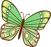 Green Butterfly. Green and yellow Illustrated Butterfly vector illustration