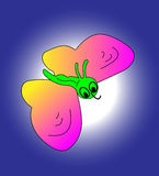 Green butterfly. Royalty Free Stock Photos