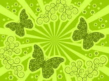 Green butterfly background Stock Photography