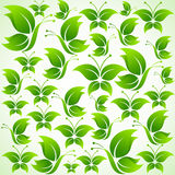 Green butterfly background Stock Image