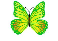 Green butterfly flying isolated on white background. Illustration design