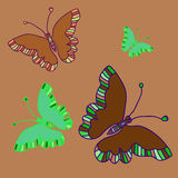 Green butterfly_set Royalty Free Stock Photos