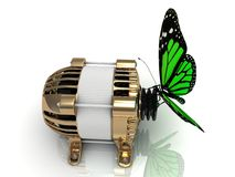 Green butterfly sits on a pulley gold generator Stock Photos
