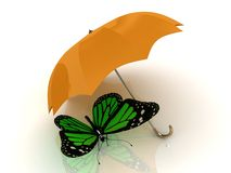 Green butterfly sits under an orange umbrella Royalty Free Stock Images