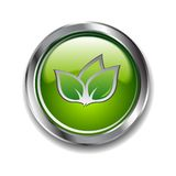 Green button Royalty Free Stock Photos