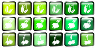 Green button. Beautiful glossy buttons in the green spectrum Stock Photo
