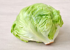 Green cabbage Royalty Free Stock Photography