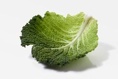 Green cabbage. Leaf over white background. brassica oleracea Stock Image