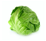 Green cabbage. Young fresh green cabbage on a white background Stock Image