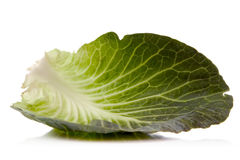 Green cabbage. Leaf over white background Stock Image