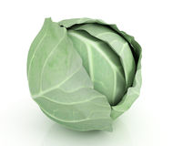 Green cabbage Royalty Free Stock Photos