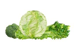 Green cabbage, broccoli and celery isolated on white. Background Stock Photography