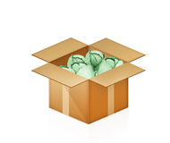Green cabbage in cardboard box on white Royalty Free Stock Photos
