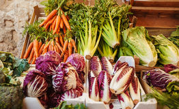 Green cabbage, carrot, brassica and healthy celery on market. Fresh vegetables on the counter. Green cabbage, bunches of carrot, brassica and healthy celery on Stock Photography