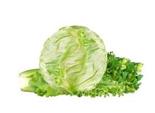 Green cabbage and celery isolated on white Stock Photography