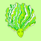 Green Cabbage Girl Face Stock Photography