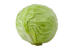 Green cabbage isolated on white background Royalty Free Stock Image