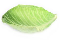 Green cabbage leaf Royalty Free Stock Photography