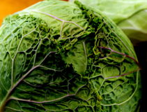Green Cabbage with Leaf Detail Royalty Free Stock Photos