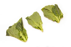 Green cabbage leaves Stock Photo
