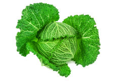 Green cabbage on white Royalty Free Stock Images