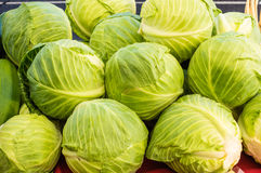 Green cabbages on display at the market Stock Photography