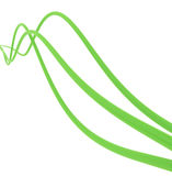 Green cables. Fibre-optical green cables on a white background Royalty Free Stock Photos