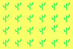 Green cacti in yellow background royalty free stock photos