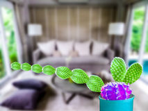 green cactus long hand purple ball living room Stock Image