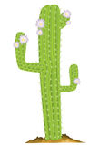 Green cactus royalty free illustration