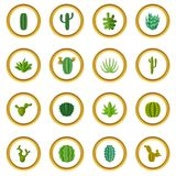 Green cactuses icons circle Royalty Free Stock Photos