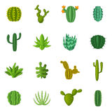 Green cactuses icons set, cartoon style Stock Image
