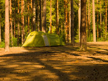 Green  camping tent in the wood on a glade Royalty Free Stock Photo