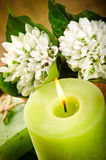 Green candle and spring flowers Stock Photography