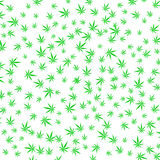 Green Cannabis Leaves Background Royalty Free Stock Photo