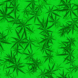Green Cannabis Leaves Background Royalty Free Stock Image