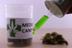 Green cannabis oil to soothe muscle aches. Extraction of green cannabis oil with a medicinal can in the background stock photography