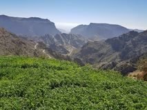 Jebel Akhdar in Oman, Green Canyon and blue sky royalty free stock photography