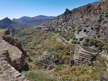 Jebel Akhdar in Oman, Green Canyon and blue sky royalty free stock photo