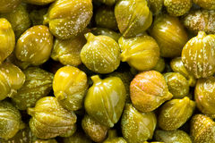Green capers background Royalty Free Stock Photography