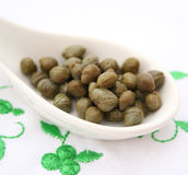 Green capers Royalty Free Stock Photos
