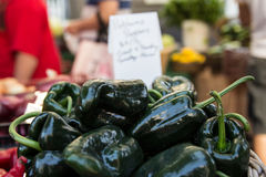Green capsicums for sale Stock Images